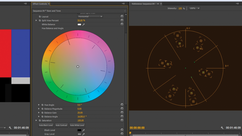 The vector scope shows you the hue and saturation values of the colors present in your image. Along with the use of a color target card, a vector scope come in very handy for color correction.
