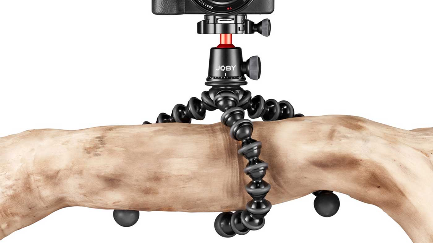 Camera attached to a tree branch using a GorillaPod.