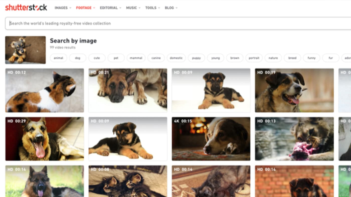 The Reverse Image Search matched results to the image you provide