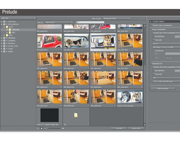 adobe creative suite 6 production premium software list