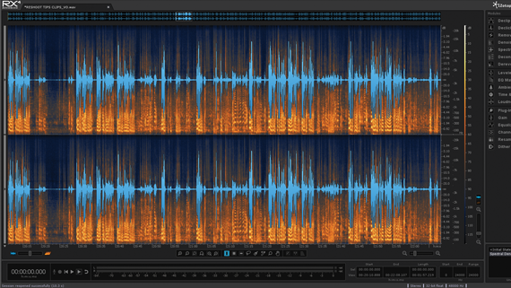 Screen grab of iZotope RX 4 Advanced Audio Repair Software